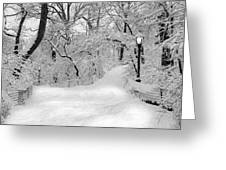 Central Park Dressed Up In White Greeting Card