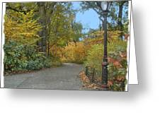 Central Park In Autumn 7 Greeting Card