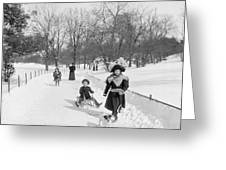 Central Park In New York Greeting Card