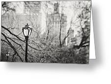 Central Park Lamppost In New York City Greeting Card