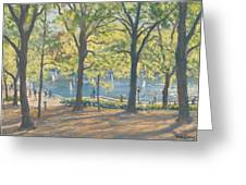 Central Park New York Greeting Card by Julian Barrow