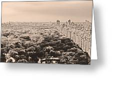 Central Park Pano Sepia Greeting Card