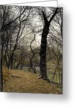 Central Park Rainy Day Number Three Greeting Card