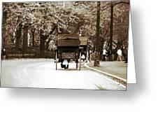 Central Park Ride Greeting Card