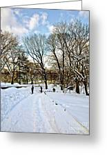 Central Park Snow Storm One Day Later2 Greeting Card