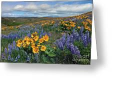 Central Washington Spring Greeting Card