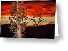 Century Soldier Sunset Greeting Card