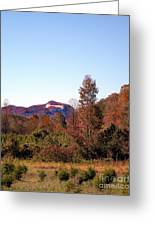 Cesars Head In The Fall Greeting Card