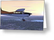 Cessna 185f   Greeting Card