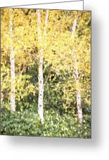 Cezanne Style Digital Painting Beautiful Autumn Color In Forest Greeting Card