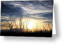 Cezanne Style Digital Painting Stark Bush Silhouette Against Stunning Sunset Sky Greeting Card