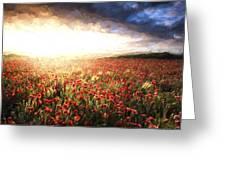 Cezanne Style Digital Painting Stunning Poppy Field Landscape Under Summer Sunset Sky Greeting Card