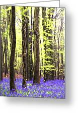 Cezanne Style Digital Painting Vibrant Bluebell Forest Landscape Greeting Card