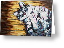 Chachi Cat Portrait Greeting Card