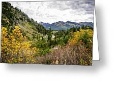 Chain Lakes Greeting Card by Blanca Braun