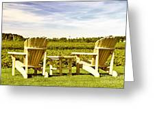 Chairs Overlooking Vineyard Greeting Card