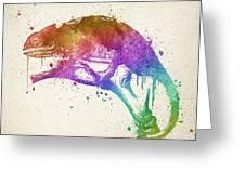 Chameleon Splash Greeting Card