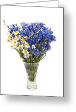 White Camomile And Blue Cornflower In Glass Vase  Greeting Card