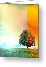 Change Of The Seasons - The Moment When Summer Meets With Fall Greeting Card