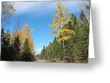 Changing Trail Greeting Card