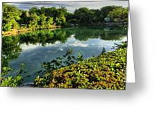Chankanaab Mexico Lagoon Greeting Card