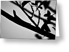 Chapel Trail 3 Greeting Card