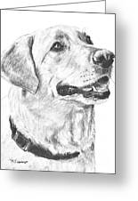 Charcoal Drawing Yellow Lab In Profile Greeting Card