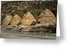 Charcoal Kilns #4 Greeting Card