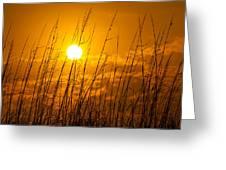 Charleston Beach Sunrise Greeting Card