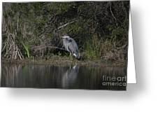 Charleston Birds Greeting Card