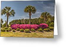 Charleston In The Spring Greeting Card