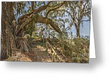 Charleston Oak Stairway Greeting Card