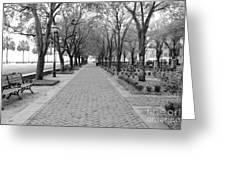 Charleston Waterfront Park Walkway - Black And White Greeting Card