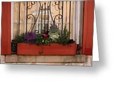 Charleston Window Garden Greeting Card