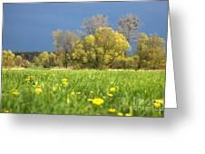Charming View Greeting Card