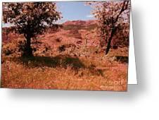 Charons Garden Wilderness Greeting Card