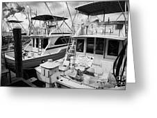 Charter Fishing Boats In The Old Seaport Of Key West Florida Usa Greeting Card