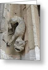 Chartres Cathedral Dog Gargoyle Greeting Card