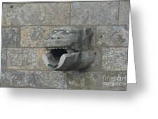 Chartres Cathedral Gargoyle Drain Greeting Card