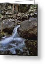 Chasm Falls Greeting Card