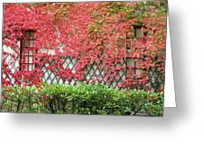 Chateau Chenonceau Vines On Wall Image One Greeting Card