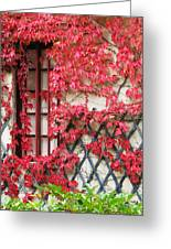 Chateau Chenonceau Vines On Wall Image Three Greeting Card