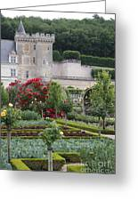 Chateau Villandry And The Cabbage Garden  Greeting Card