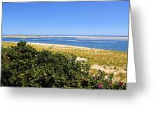 Chatham Beach Greeting Card