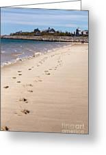 Chatham Beach Stroll Greeting Card