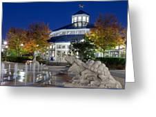 Chattanooga Park At Night Greeting Card