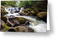 Chattooga River Potholes Waterfall Highlands Nc - The Artist's Hand Greeting Card by Dave Allen
