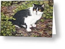 Checkers The Cat Greeting Card