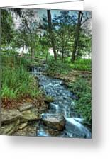 Cheekwood Creek Greeting Card by Zachary Cox