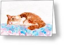Cheeky Cat Greeting Card